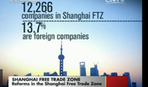 ftz business law setup