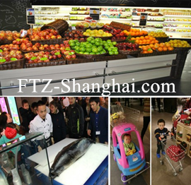 ftz incorporation company